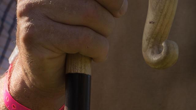 Main avec bâton de Berger à la Fête des Bergers d'Aramits