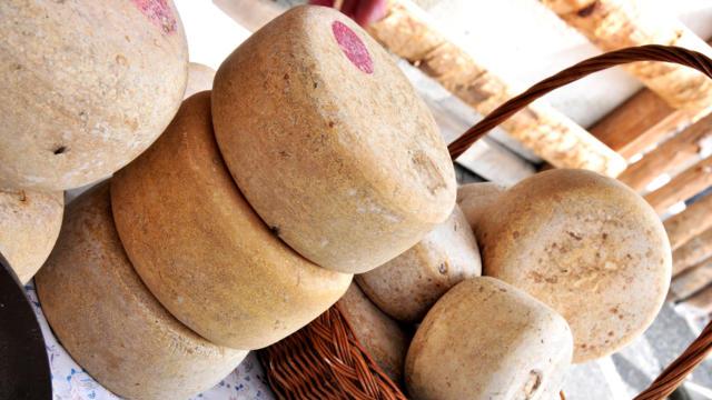 Étal de fromages fermiers des Pyrénées