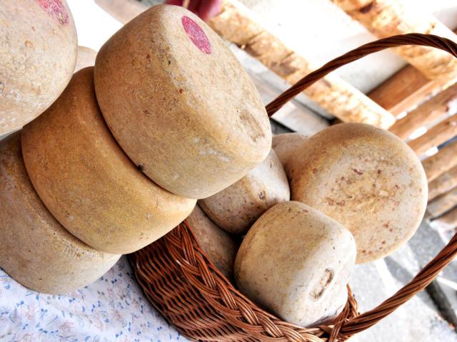 Etal de fromages fermiers des pyrénées