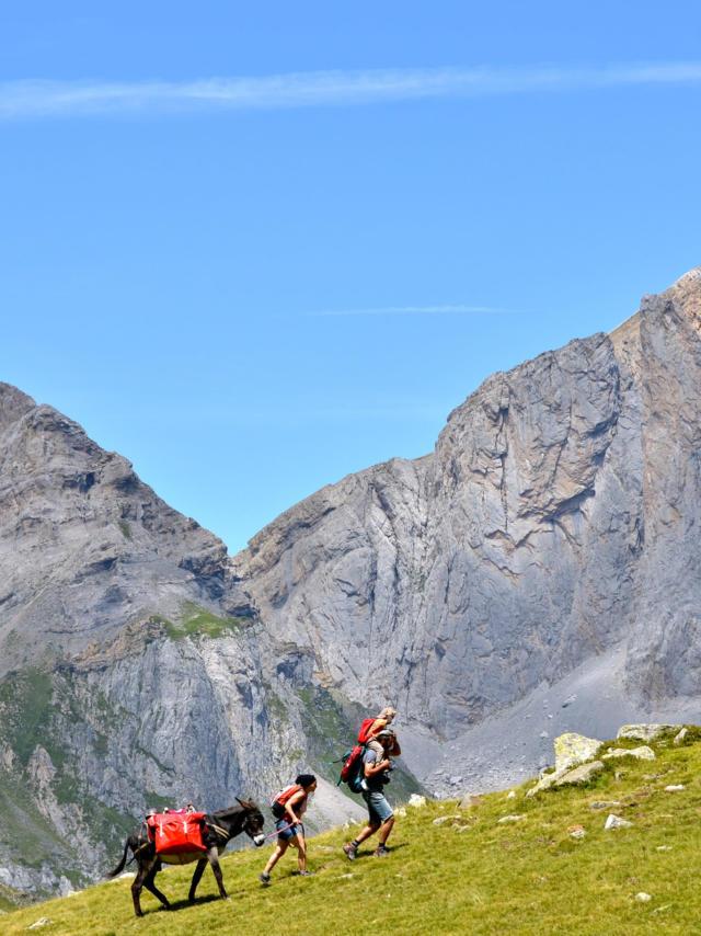 Une famille de randonneurs avec un âne marche dans la montagne
