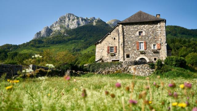 Maison béarnaise en pierre dans un environnement verdoyant de montagne