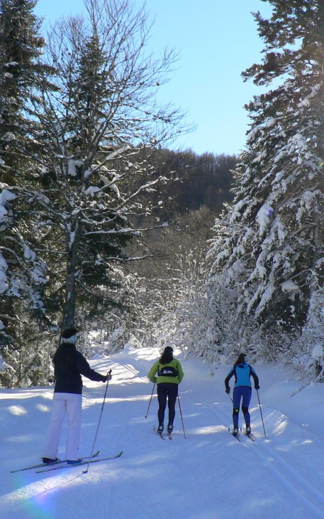 Piste de ski de fond au Somport