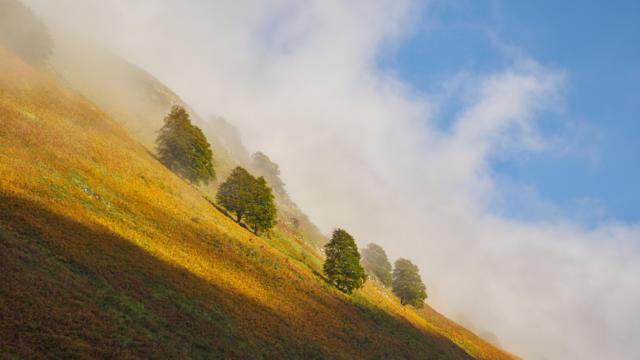 Paysage de montagne dans le cirque de Lescun en vallée d'Aspe