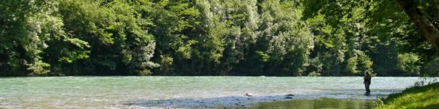 Pêcheur au bord du gave d'Oloron