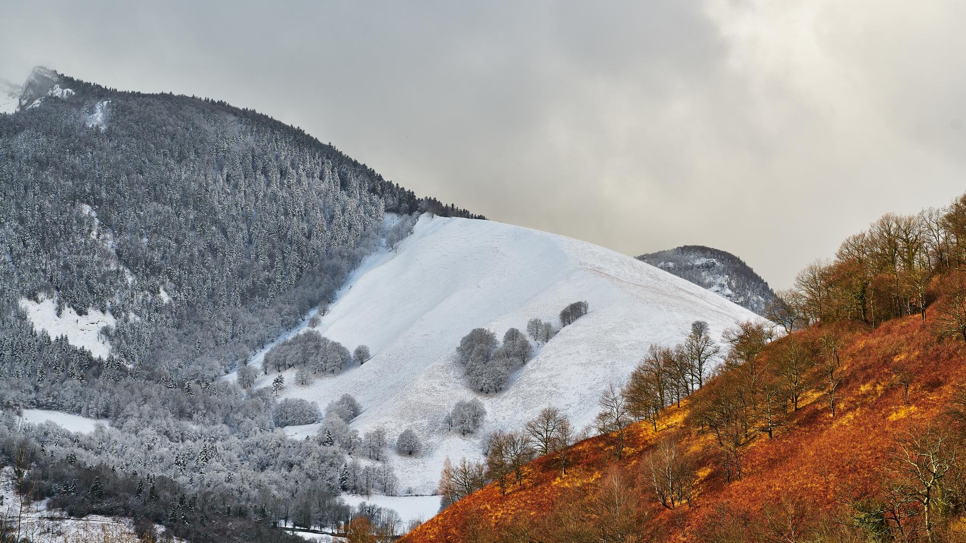Contraste d'un flanc de montagne enneigé et d'un flanc de montagne aux couleurs d'automne à Lèes Athas
