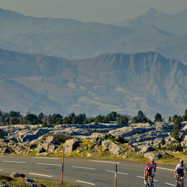 Cyclistes effectuant l'ascencion du Col De La Pierre St Martin