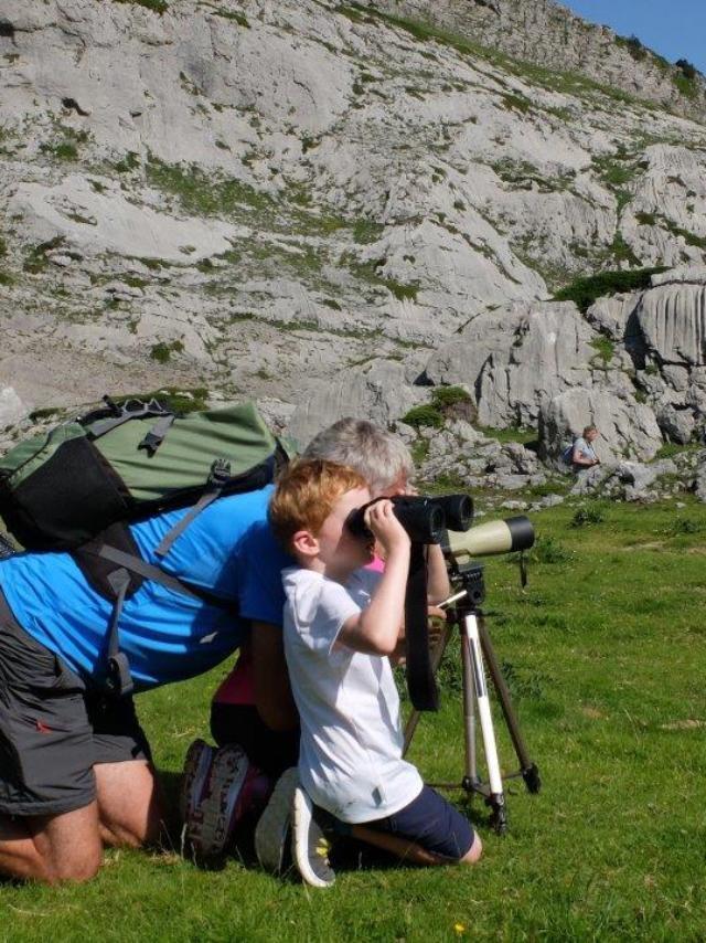Observation des marmottes accompagnée d'un guide à la Pierre Saint-Martin