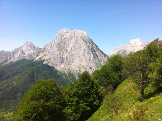 Panorama de montagne : Hêtraie